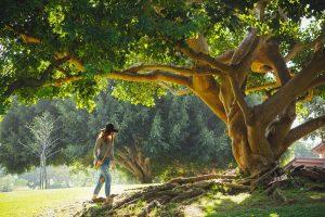 Baumübung Frau läuft auf Baum zu